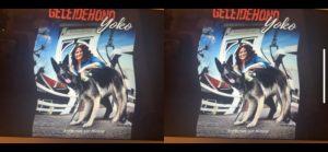 Cover Geleidehond Yoko gezien met vertekend beeld