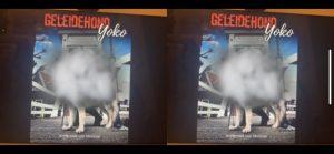 Cover Geleidehond Yoko gezien met blinde vlek